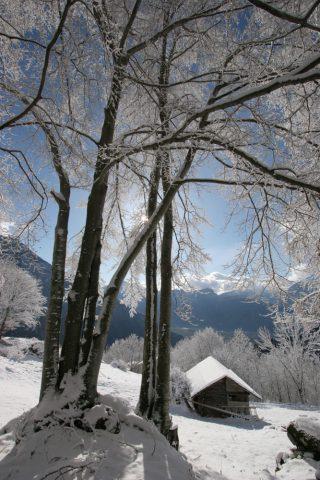 En hiver au Saveney
