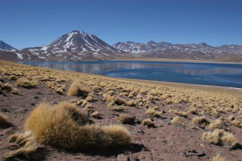 Lac Miscanti au Chili