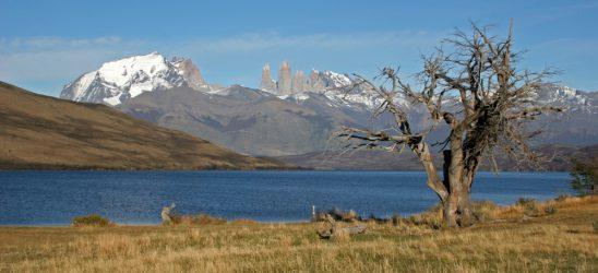 Panorama - Torres del Paine