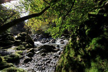 Rivière le Trient